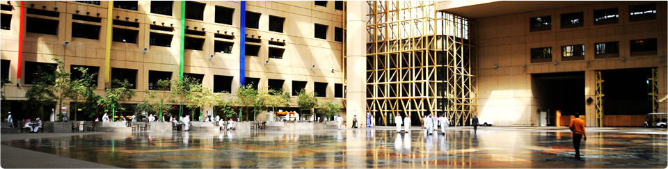 King Saud University - King Saud University